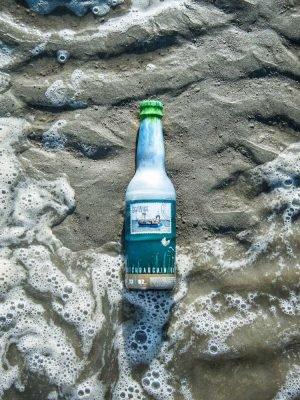 Seawise bier Zeekraal